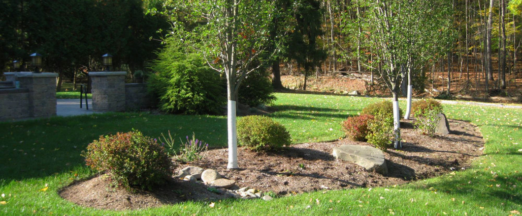 Choose a Landscaping Company With 14+ Years of Experience