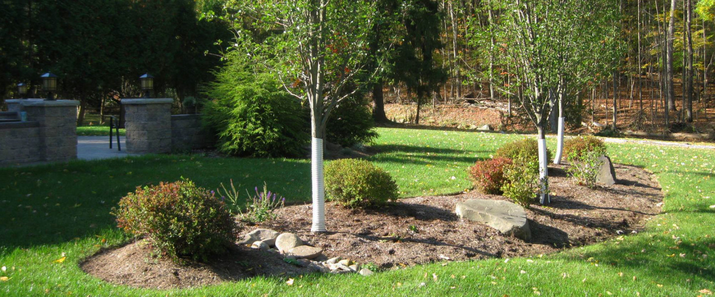 Choose a Landscaping Company With 17+ Years of Experience