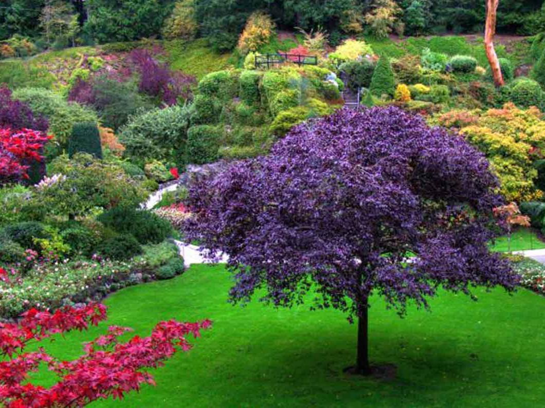 Landscape Maintenance Vestal Endicott Ny Empire Lawn